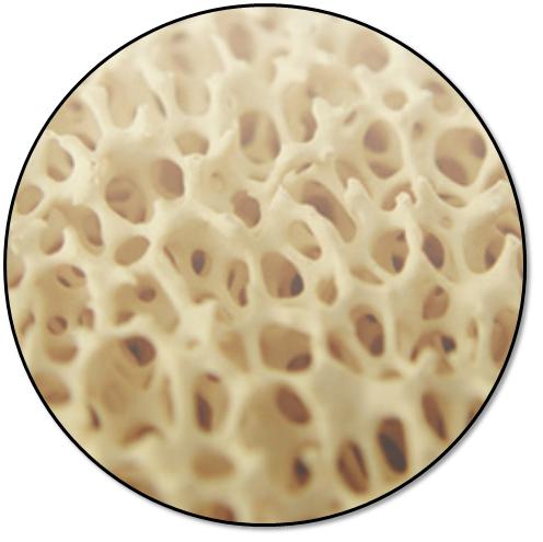 ceramic foam